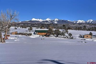 Mancos Single Family Home For Sale: 40594 Hwy 184