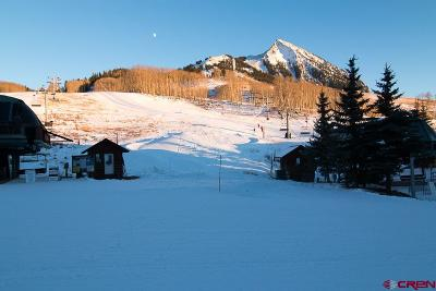 Mt. Crested Butte Condo/Townhouse For Sale: 12 Snowmass Road #420