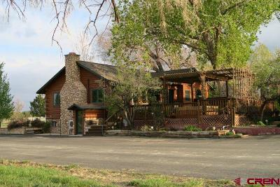 Dolores Single Family Home For Sale: 14242 Road 28