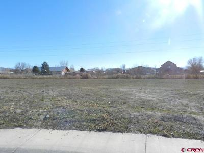 Montrose Residential Lots & Land UC/Contingent/Call LB: Bluegrass Court - Lot 72