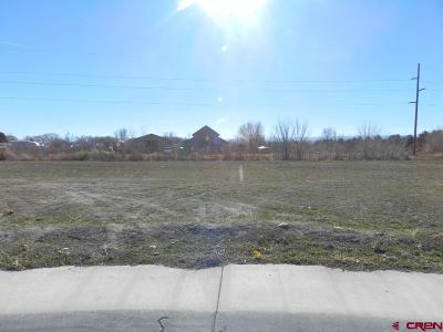 Montrose Residential Lots & Land For Sale: Bluegrass Court - Lot 73