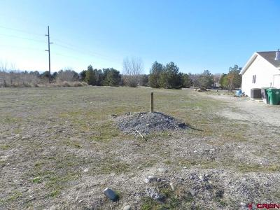 Montrose Residential Lots & Land For Sale: Bluegrass Court - Lot 74