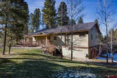 La Plata County Single Family Home UC/Contingent/Call LB: 44 Copper Belle
