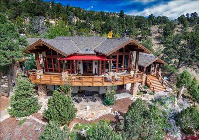 Ouray County Single Family Home For Sale: 354 Pleasant Valley Drive