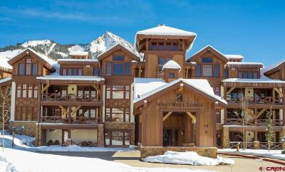 Mt. Crested Butte Condo/Townhouse For Sale: 14 Hunter Hill Road #C203