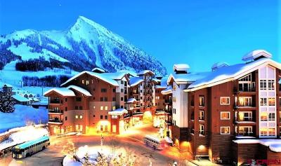 Mt. Crested Butte Condo/Townhouse For Sale: 620 Gothic Road #203
