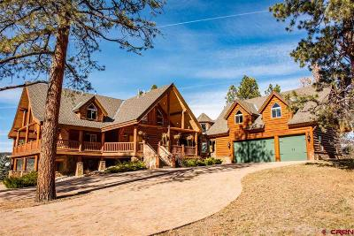 Pagosa Springs Single Family Home For Sale: 137 Hidden Valley Drive