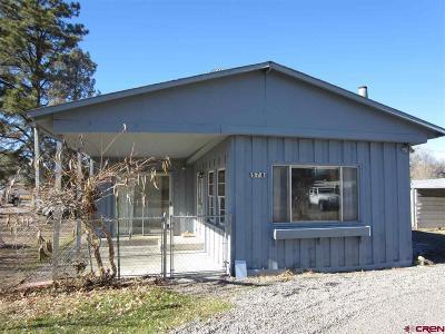 Montrose Single Family Home UC/Contingent/Call LB: 578 Pierce