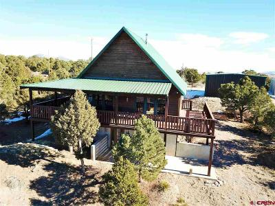 South Fork CO Single Family Home For Sale: $345,000