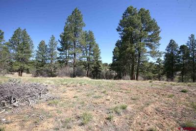 Durango Residential Lots & Land For Sale: 102 South Fork Road