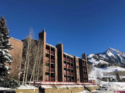 Mt. Crested Butte Condo/Townhouse For Sale: 25 Emmons Road #22