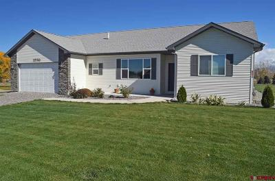 Montrose Single Family Home UC/Contingent/Call LB: 11760 Joyful Way
