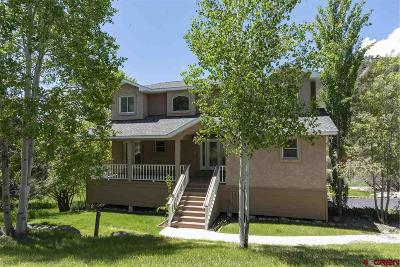 La Plata County Single Family Home For Sale: 42 Tanglewood Drive