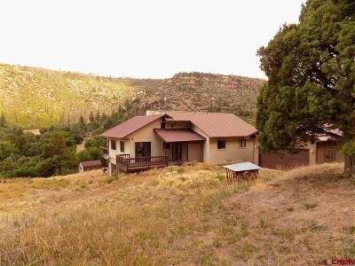 Mancos Single Family Home For Sale: 5826 Road 46