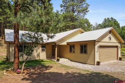 Bayfield Single Family Home UC/Contingent/Call LB: 59 E Valley View