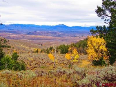Gunnison County Residential Lots & Land For Sale: Blm Road