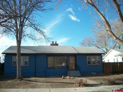 Delta County Single Family Home For Sale: 727 Grand Ave. Avenue