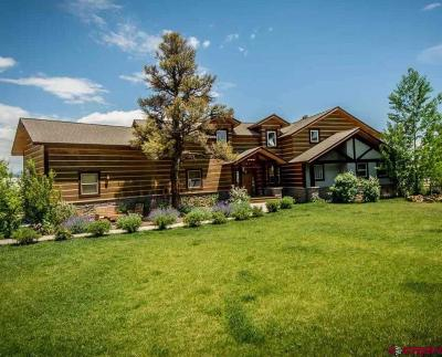 Pagosa Springs Single Family Home For Sale: 403 N Pagosa Boulevard