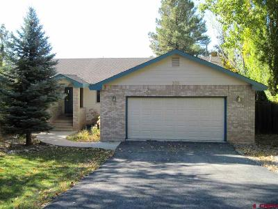 Single Family Home For Sale: 235 Valley View Circle