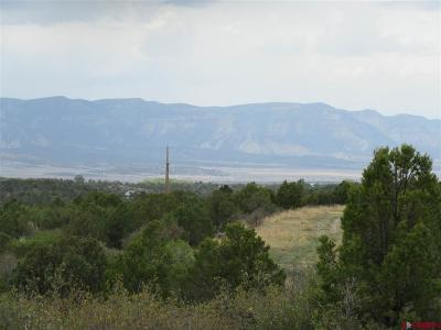 Mancos Residential Lots & Land For Sale: Road 34.5 Lot C