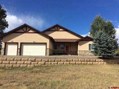 Pagosa Springs Single Family Home For Sale: 196 Dylan Drive
