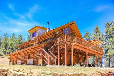 La Plata County Single Family Home For Sale: 3495 Cr 502