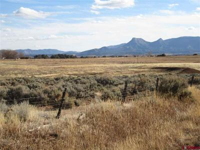 Mancos Residential Lots & Land For Sale: 14984 Road 31