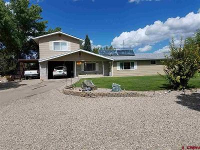 Mancos Single Family Home For Sale: 29097 Road L