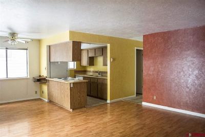 Durango CO Condo/Townhouse For Sale: $230,000