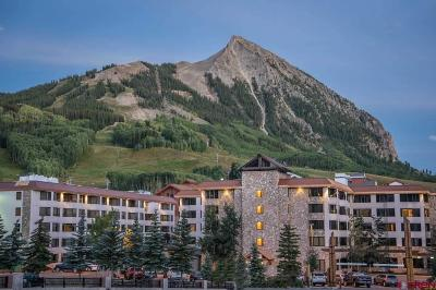 Mt. Crested Butte Condo/Townhouse For Sale: 6 Emmons Road #266