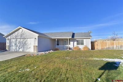 Montrose Single Family Home UC/Contingent/Call LB: 1537 Haystack Road