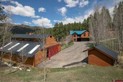 Durango Single Family Home For Sale: 104 Sunset Lane