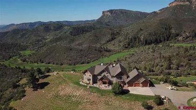 Durango Single Family Home For Sale: 935 Mountain Memories