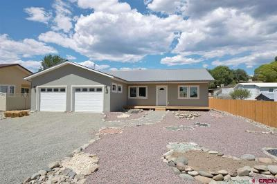 Delta County Single Family Home For Sale: 400 Maple Drive