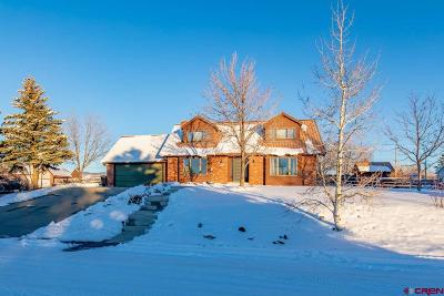 Montrose Single Family Home For Sale: 1580 Jupiter Drive