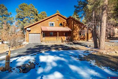 Pagosa Springs Single Family Home For Sale: 354 Pines Drive