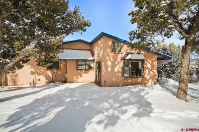 La Plata County Single Family Home For Sale: 41 Ridge Place