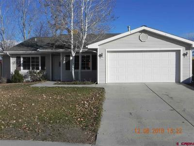 Montrose Single Family Home For Sale: 804 Timber Buck Court