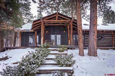 La Plata County Single Family Home For Sale: 3163 Cr 502