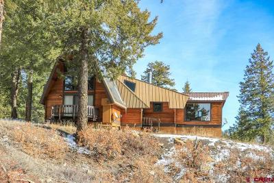 Pagosa Springs Single Family Home For Sale: 2600 Turkey Springs Road