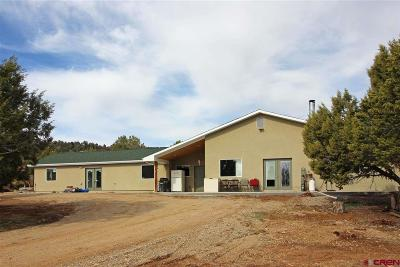 Mancos Single Family Home For Sale: 36582 K.3 Road