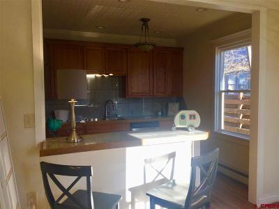 Montrose Single Family Home UC/Contingent/Call LB: 21 S Pythian Street