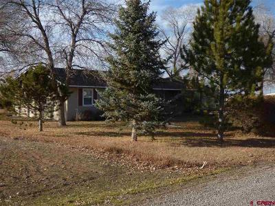 Montrose Single Family Home NEW: 62833 Spring Creek
