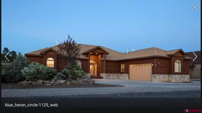Pagosa Springs Single Family Home For Sale: 161 Blue Heron