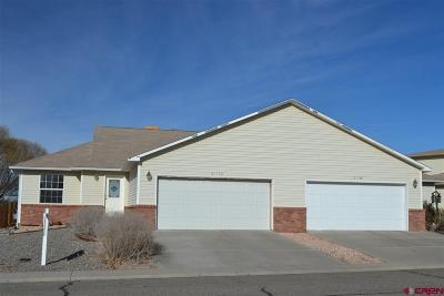 Montrose Condo/Townhouse NEW: 2117 Mead Lane #A