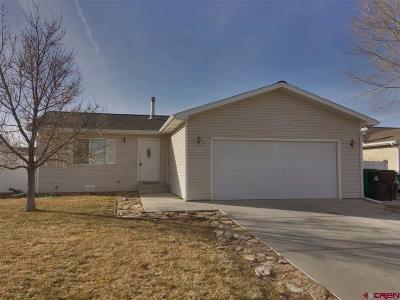 Montrose Single Family Home NEW: 251 Evergreen Court
