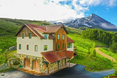 Mt. Crested Butte Single Family Home For Sale: 67 Cinnamon Mountain Road
