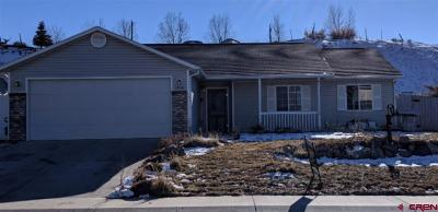 Montrose Single Family Home UC/Contingent/Call LB: 1542 Branding Iron Drive