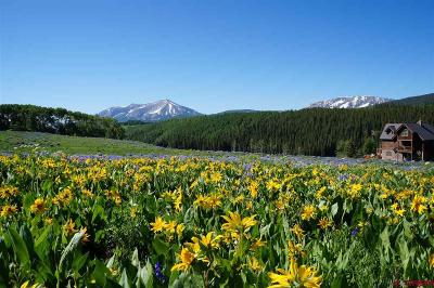 Crested Butte Residential Lots & Land For Sale: 470 Meadow Drive