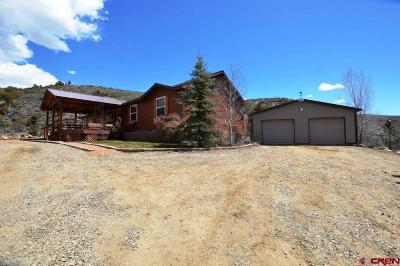 Gunnison Mobile/Manufactured For Sale: 1166 County Road 20
